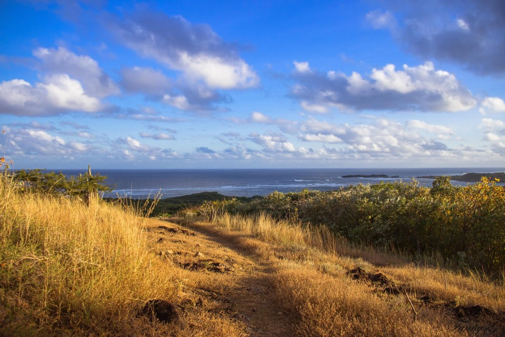 Vue sur Cap Macré, en remontant du chemin des Mornes (c) Fanny G.