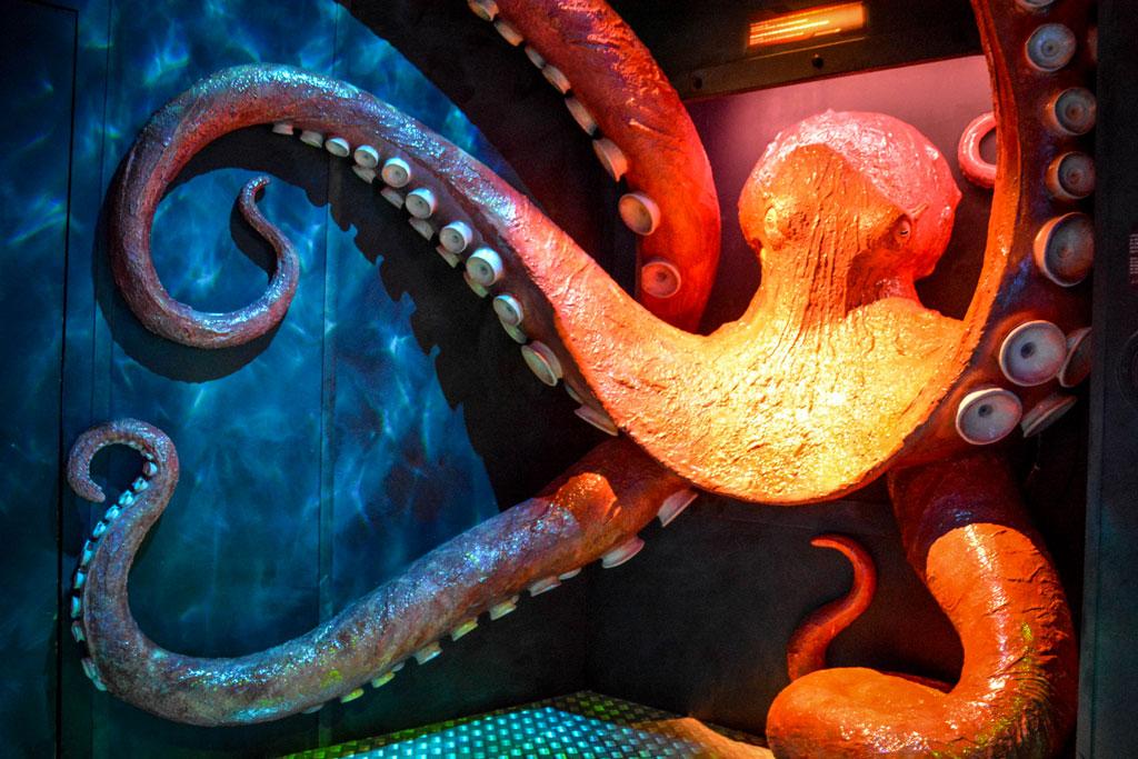 aquarium-montpellier-17