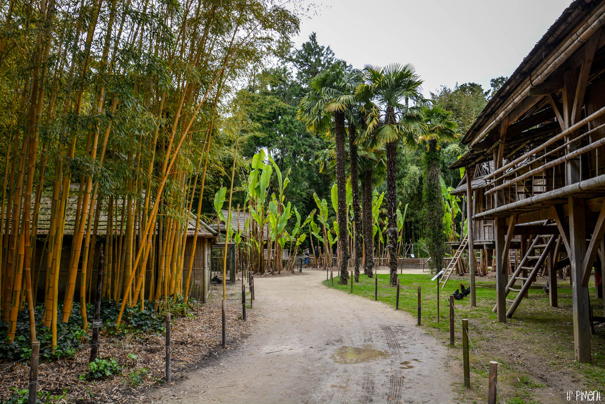 bambouseraie-anduze-1