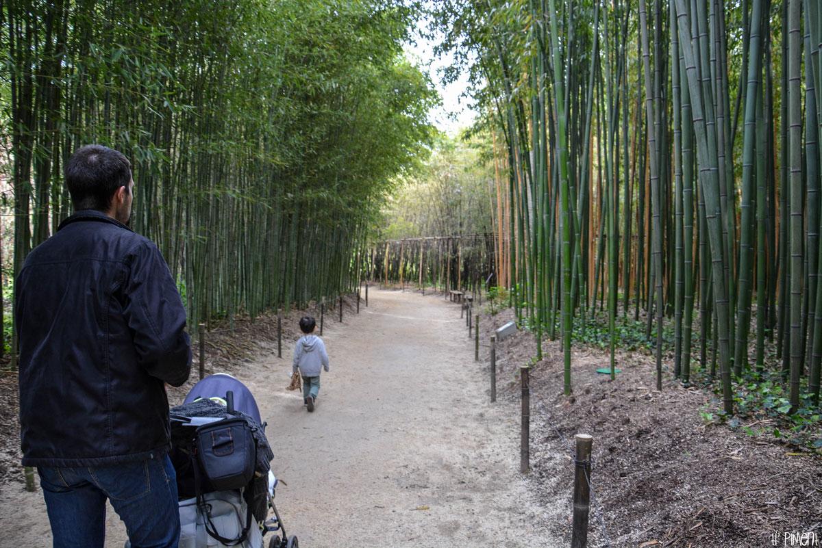 bambouseraie-anduze-11