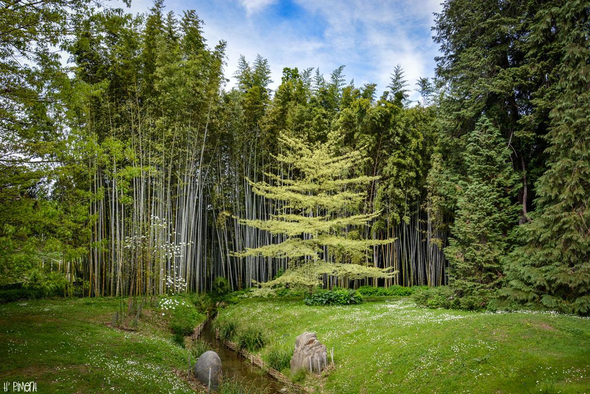 bambouseraie-anduze-14