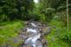 Rivière de l'Alma Martinique
