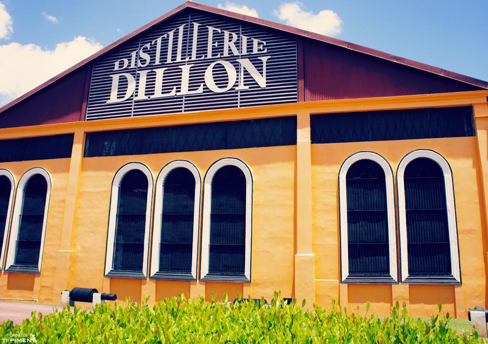 dillon-T7