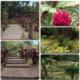 jardin de balata marie