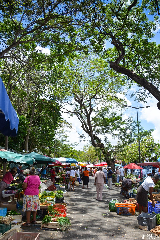 Marché Max Ransay ou parc floral Fort-de-France Martinique