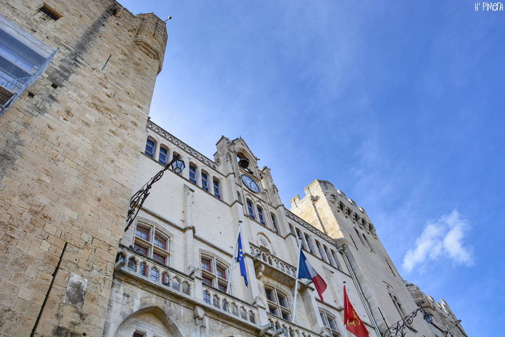 narbonne-9