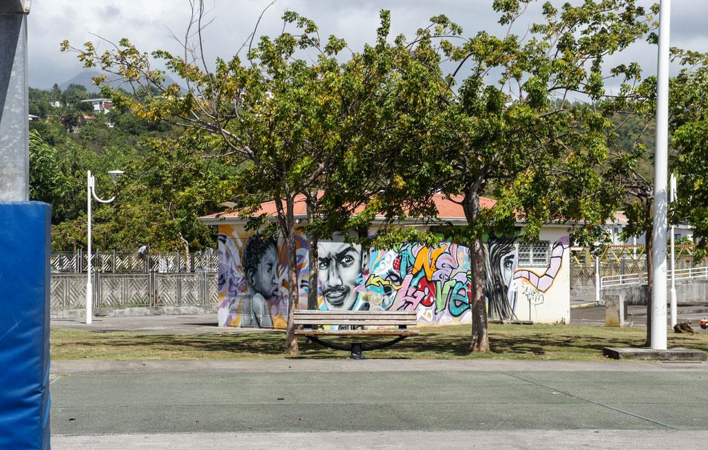 street-art-schoelcher-13