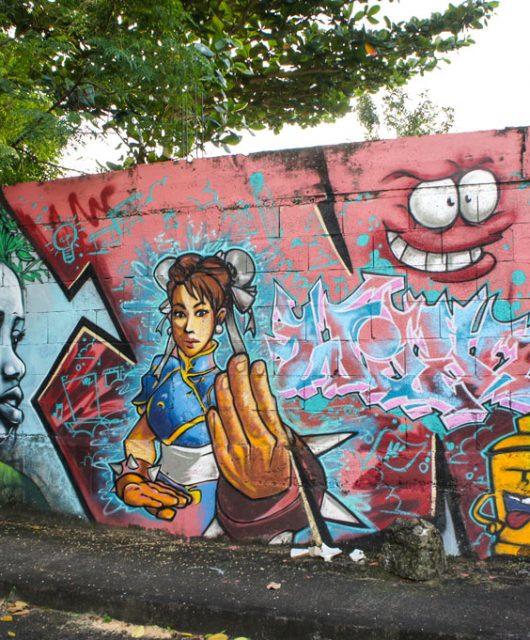 street-art-schoelcher-21