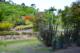 zoo14